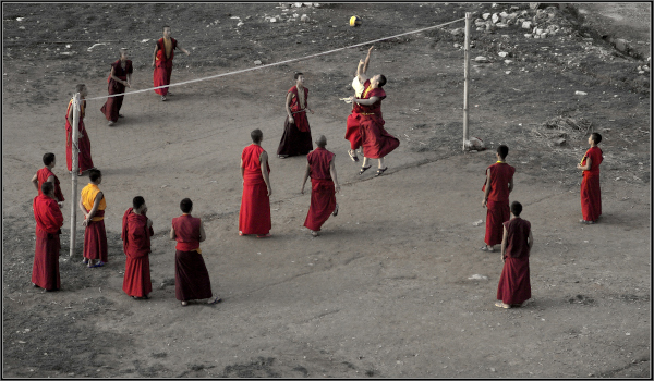 volleyball_monks